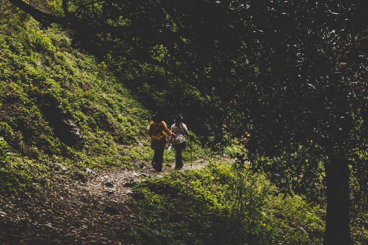 Tourists on trekking trip to Dagri Forest