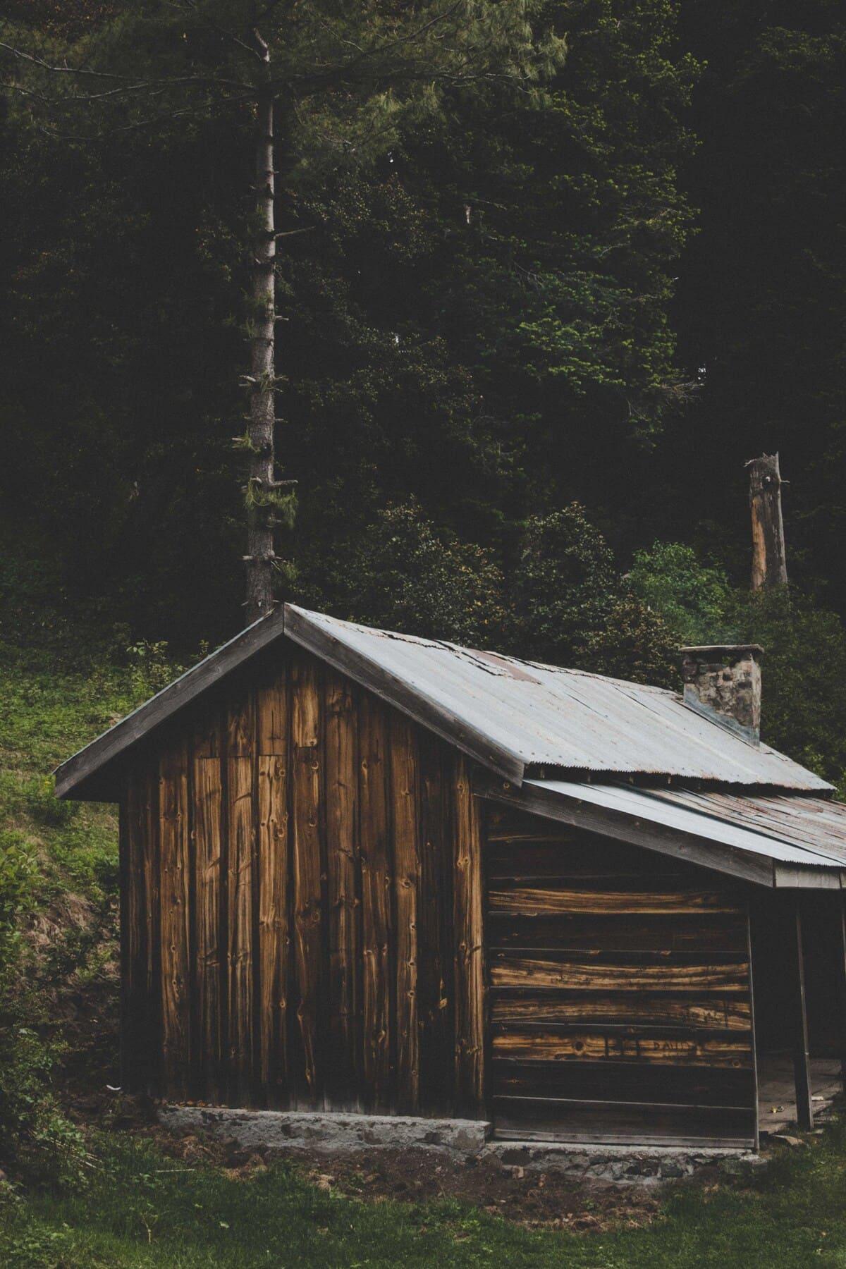 Wooden hut on trekking trip to Dagri Forest(1)